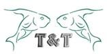 logo-tt1